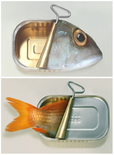 Art Grafts - Some Fish Can & Some Fish Can't